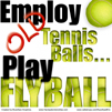 Employ Old Tennis Balls, Play Flyball!