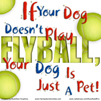 If Your Dog Doesn't Play Flyball, He's Just A Pet!