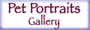 Pet Portraits By Terry Gallery Button